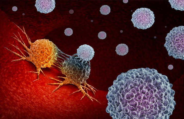 กำจัดมะเร็งขั้นสูงสุด! กับ 'ภูมิคุ้มกันบำบัด' วิธีรักษาใหม่ ที่ฆ่าได้ แม้เซลล์มะเร็งซ่อนตัว